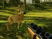 Joue à Deer Hunter