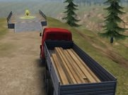 Joue àTruck Driver Crazy Road